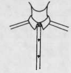 Traditional two-piece collar